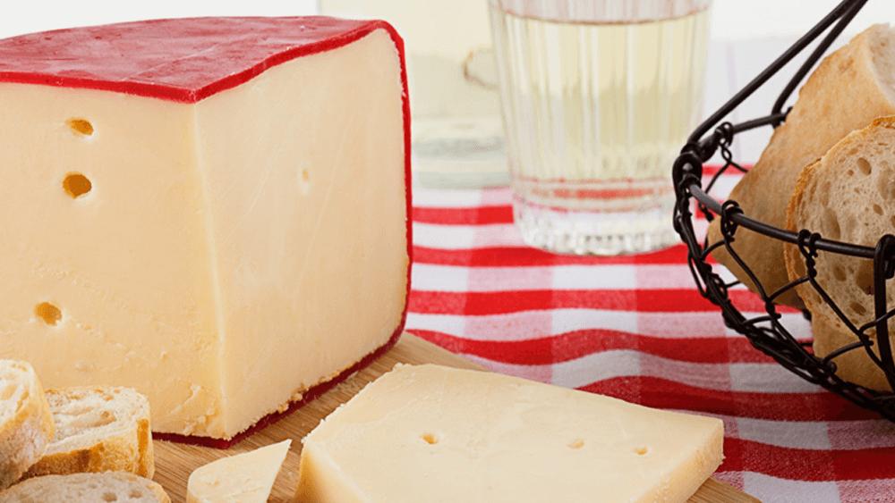 Гауда - история с вкус на сирене